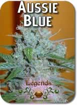 Legends_Aussie_Blues_Seeds