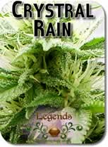 Legends_Crystal_Rain_Seeds