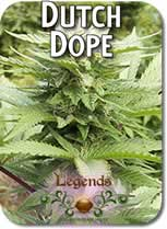 Legends_Dutch_Dope_Seeds