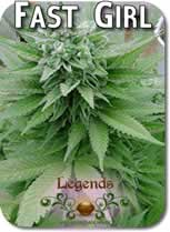 Legends_First_Girl_Seeds