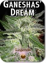 Legends_Ganeshas_Dream_Seeds