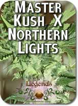 Legends_Master_Kush_X_Northern_Lights_Seeds
