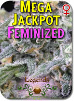 Legends_Mega_Jackpot_FEMINZED_Seeds