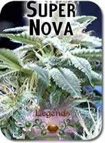 Legends_Supernova_Seeds